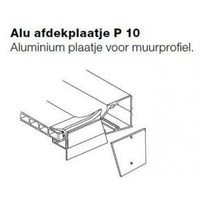 Aluminium afdekplaat P10 voor muurprofiel